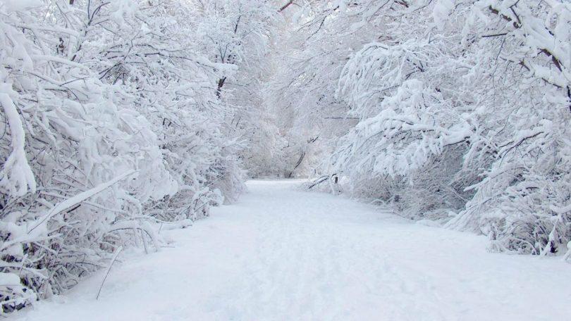 Zašto je snijeg bijel? – Mreža za izgradnju mira